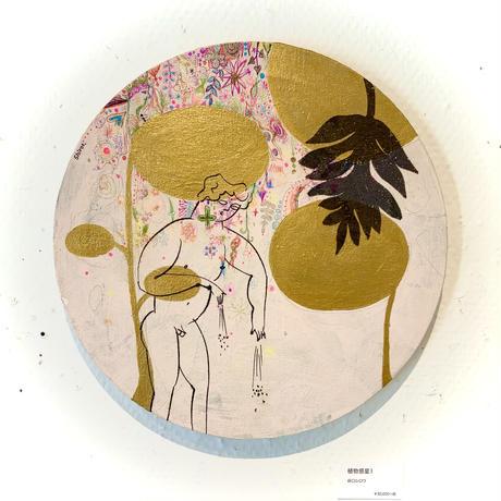 PLANTS OF PLANET 谷口シロウ「植物惑星1」