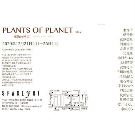 PLANTS OF PLANET 水沢そら「Lined Garden」