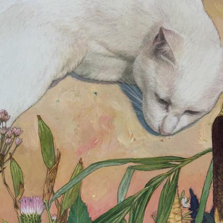 深谷良一「猫の眠り」