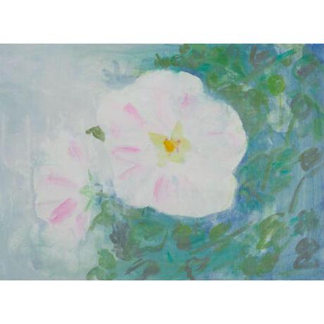 小池アミイゴ「芙蓉の花」