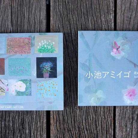 小池アミイゴ ポストカードセット(12枚)post card set 12 amigo koike