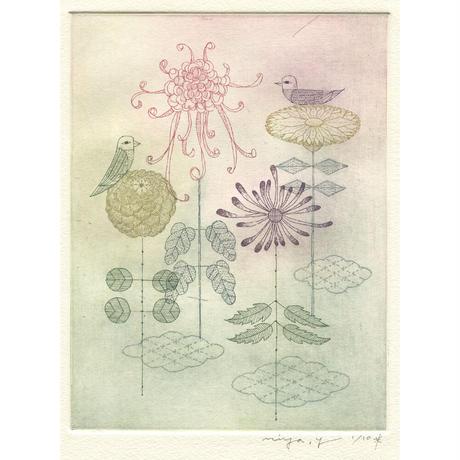 山田ミヤ「あでやかな菊」