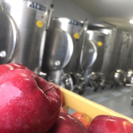 リンゴジュース定期便 毎月15本+2本お届けコース