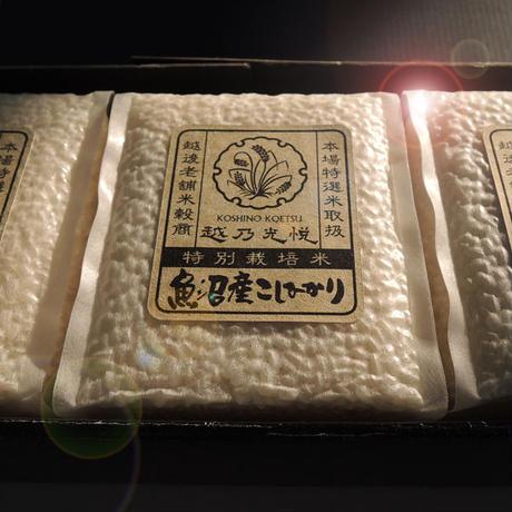 中魚沼十日町産コシヒカリ 特別栽培米 ギフトセット 1.35kg (450g✕3) [深雪の十日町] ギフト専用シリーズ