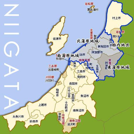 新米02  新潟県産つきあかり 5kg  [艶々の大粒米] 厳選産地米シリーズ