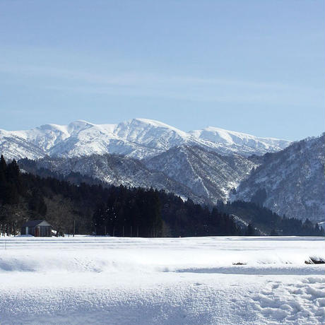新米02  栃尾産コシヒカリ 5kg [雪国盆地] 厳選産地米シリーズ