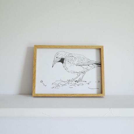 """Naoya Enomoto     """"bird"""""""