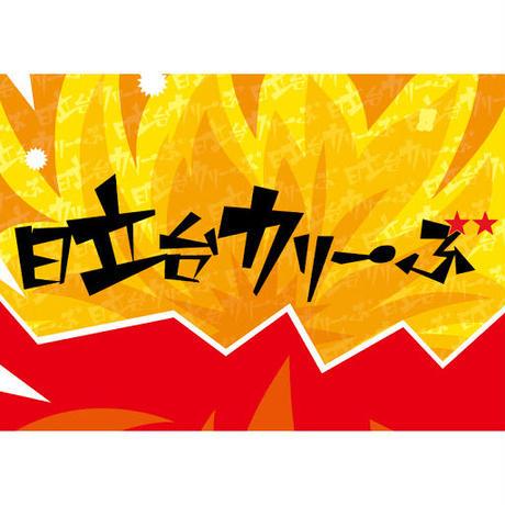 【日立台カリーぶ】冷凍レイソルカリー 単品500g (3~4人分)