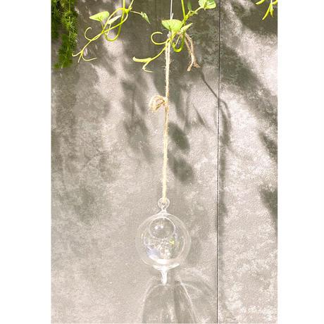 Hanging Vase Ball
