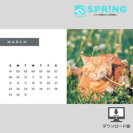 にゃんこ♡カレンダー (2020年3月 )
