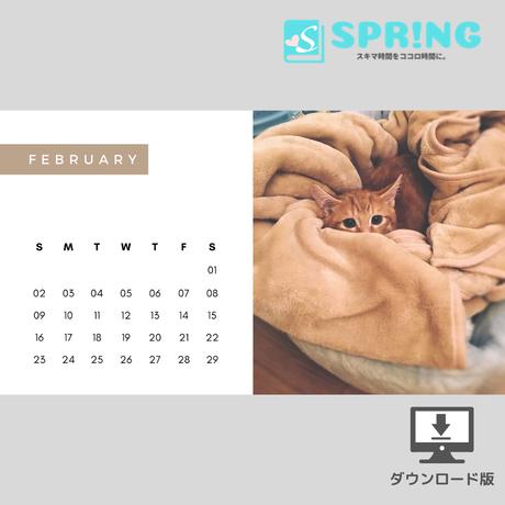 にゃんこ♡カレンダー (2020年2月 )