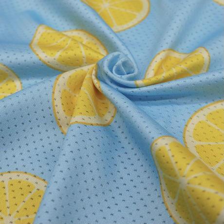 メッシュレモンシャツ