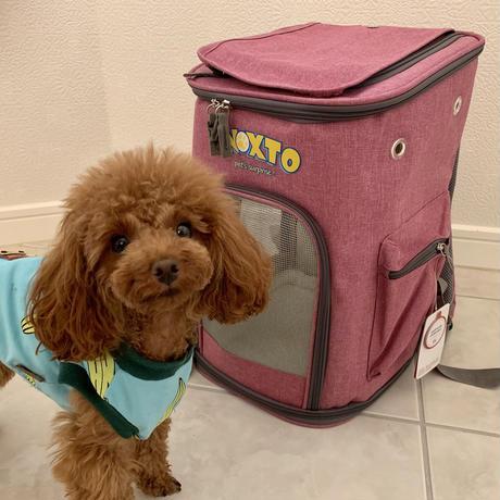 ペットキャリー用バッグパック