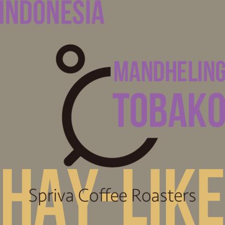 【干し草感がクセになる!】インドネシア マンデリン・トバコ G1 100g