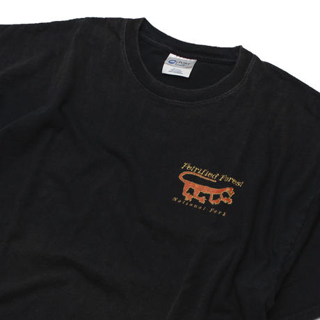 """Petrified Forest National Park"" S/S Tee"