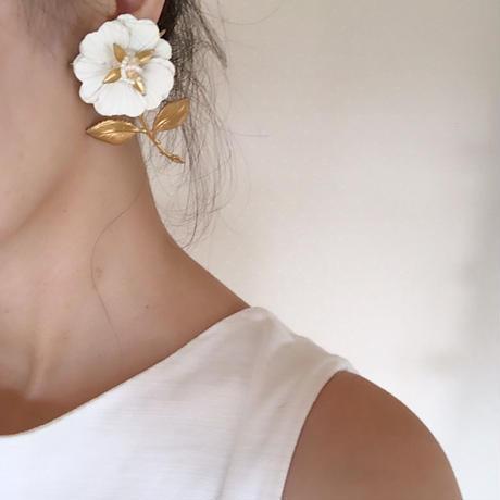White sun flower