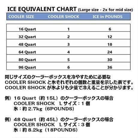 COOLER SHOCK(クーラーショック)Lサイズ 3個セット 保冷剤
