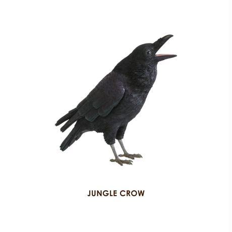ペットバンク ジャングル クロウ カラス PET BANK JUNGLE CROW