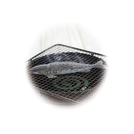 蚊取り線香ホルダー グリルフィッシュモスキート M4793 おしゃれ ブリキ