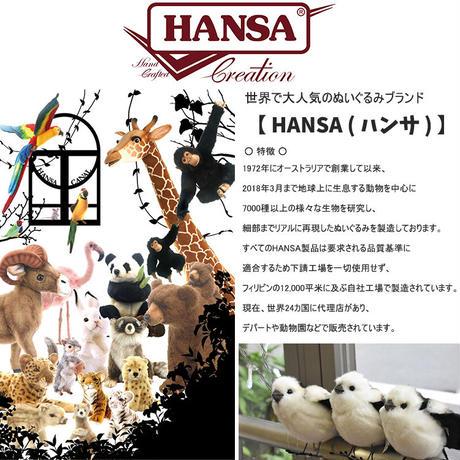 HANSA ハンサ シロアザラシ 3766 リアル ぬいぐるみ 動物 もふもふ プレゼント