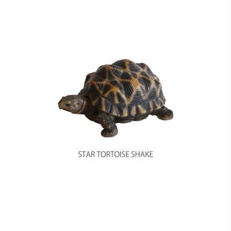 レプタイルズマグ REPTILES MAG スタートータスシェイク STAR TORTOISE SHAKE 57792