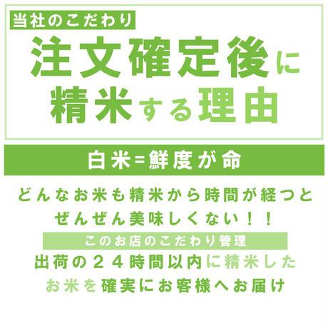 新米令和3年新潟県産コシヒカリ白米30kg (5kg ×6個パック)