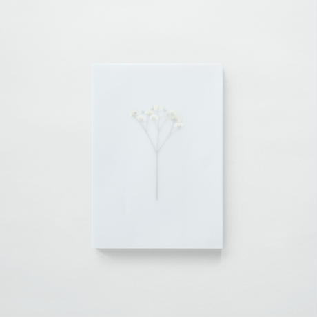 DAN TOMIMATSU〈FLOWer〉
