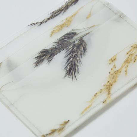 LUISA CEVESE〈CARD CASE_GRASSES/L〉(2TYPES)