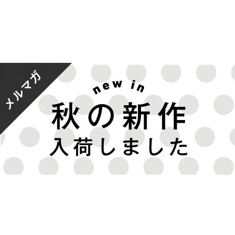 メールマガジン素材|600×280px  秋の新作[B_02]