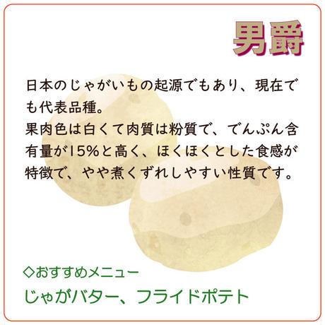 【北海道産】 じゃがいも 「男爵」 約5kg(新じゃが)