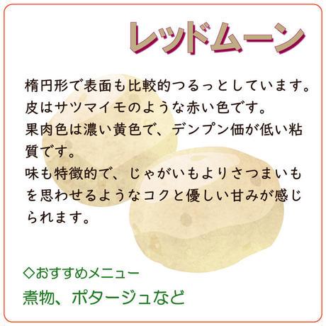 【北海道産】 じゃがいも 「レッドムーン」 約3kg