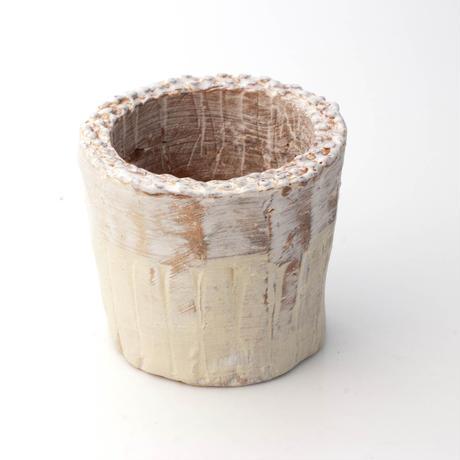 陶器製(2号ポット相当)多肉植物の欲しがる植木鉢 SSSc-4106イエロー