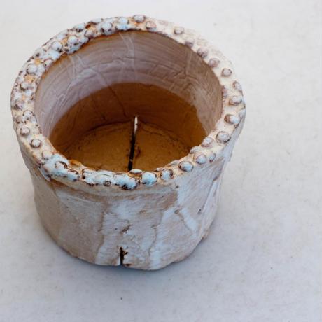 陶器製(2号ポット相当)多肉植物の欲しがる植木鉢 PR-6930
