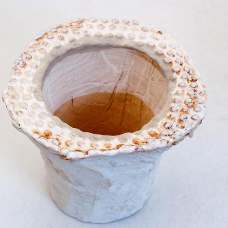 陶器製(2号ポット相当)多肉植物の欲しがる植木鉢 AAMcd-7768グリーン