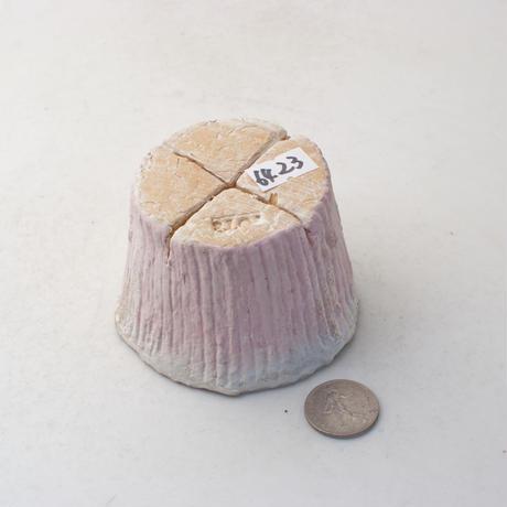 陶器製(2号ポット相当)多肉植物の欲しがる植木鉢 PR c-6423ピンク