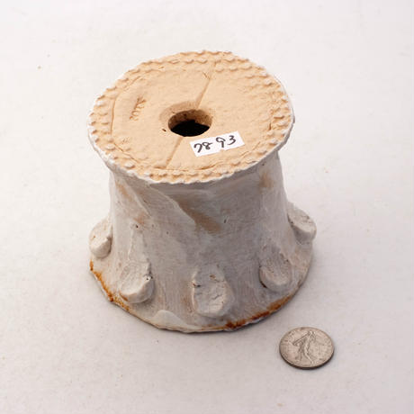 陶器製(2号ポット相当)多肉植物の欲しがる植木鉢 SSScd-7893イエロー