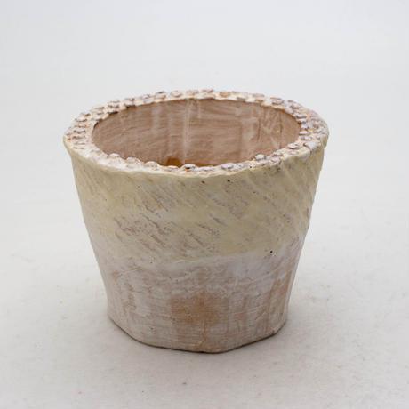 陶器製(2.5号ポット相当)多肉植物の欲しがる植木鉢 SMSc-6924