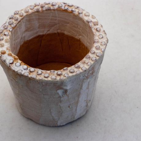 陶器製(2号ポット相当)多肉植物の欲しがる植木鉢 SSSd-6921