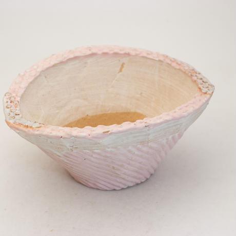 陶器製 多肉植物の欲しがる植木鉢 CCc 曲-9952 ピンク