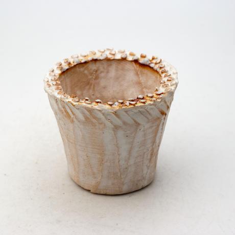 陶器製(2号ポット相当)多肉植物の欲しがる植木鉢 NSSS-9194