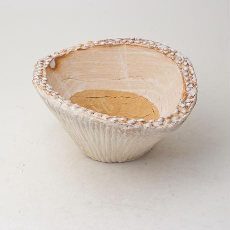 陶器製 多肉植物の欲しがる植木鉢 CCc 曲-6412イエロー