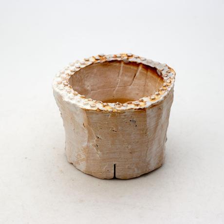 陶器製(2号ポット相当)多肉植物の欲しがる植木鉢 PR-9162