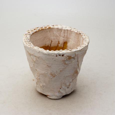 陶器製(2.5号ポット相当)多肉植物の欲しがる植木鉢 OPSd-8649