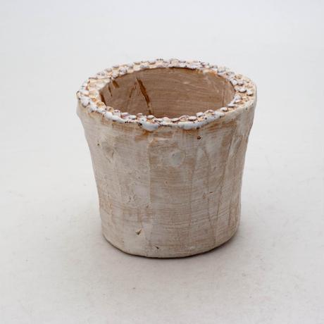 陶器製(2号ポット相当)多肉植物の欲しがる植木鉢 SSSd-6920
