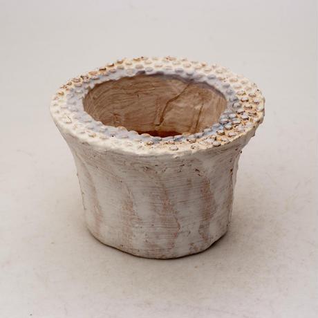 陶器製(2号ポット相当)多肉植物の欲しがる植木鉢 PScd-ブルー6974