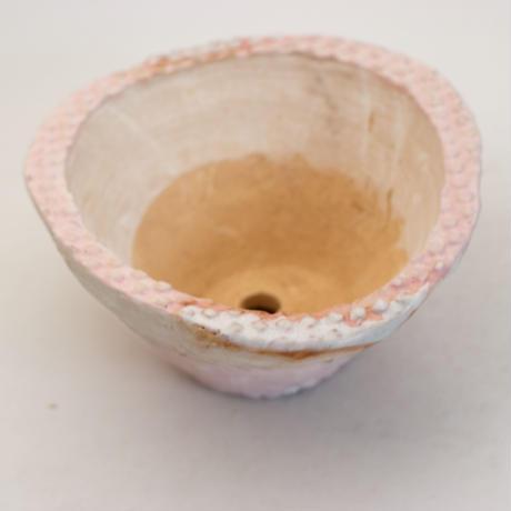 陶器製 多肉植物の欲しがる植木鉢 CCc 曲-9953 ピンク