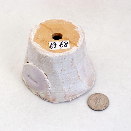 陶器製(2号ポット相当)多肉植物の欲しがる植木鉢  AAScd-パープル6968