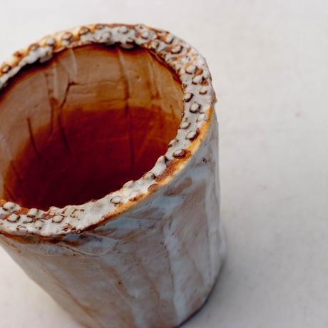 陶器製(2.5号ポット相当)多肉植物の欲しがる植木鉢 NSS-8972