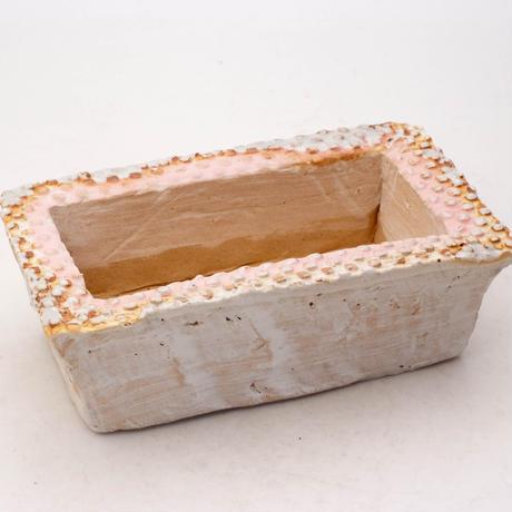 陶器製 多肉植物の欲しがる植木鉢 AESScd-7950ピンク
