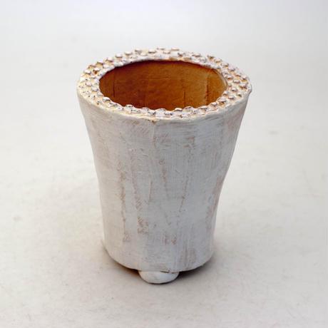 陶器製(2号ポット相当)多肉植物の欲しがる植木鉢 AAMh-8871